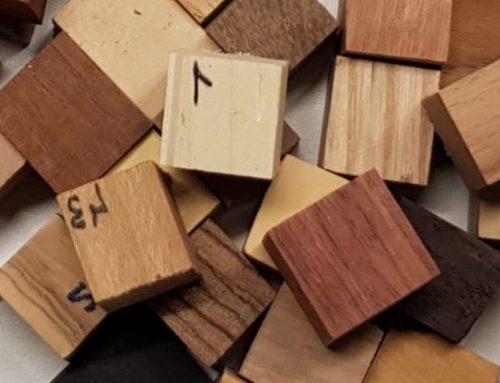 La fusta és el nostre material principal per moltes raons, també als patis escolars!